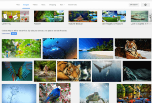 Image search result